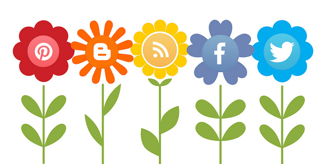Micro Post: Social Media Kiddos